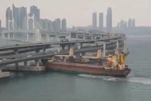 Say rượu, lái tàu đâm sầm vào cầu ở Hàn Quốc