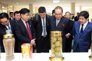 Phái đoàn cấp cao nhà nước Triều Tiên tham quan một số địa điểm tại Việt Nam