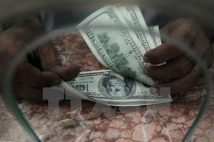 Kiều hối - 'dòng huyết mạch' của tăng trưởng kinh tế châu Phi (Phần 1)