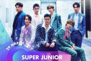 Super Junior, Chungha xác nhận tham gia đêm nhạc Việt-Hàn tại Việt Nam