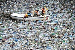 Nhờ một ca khúc, Đài Loan thoát thảm cảnh 'chết' trong rác thải