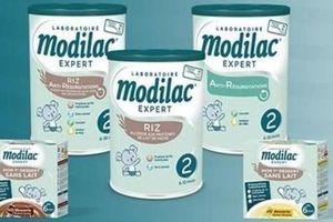 Thu hồi sữa Modilac nhiễm khuẩn gây bệnh đường ruột