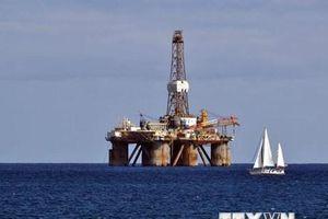 Indonesia tìm thấy 10 khu vực có trữ lượng dầu khí lớn