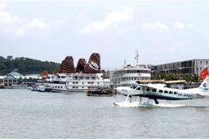 Du khách Nhật ngã tử vong tại cảng Tuần Châu