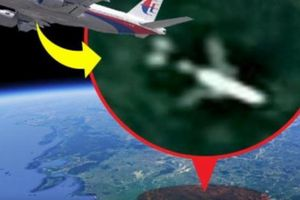 '99% khả năng' máy bay MH370 mất tích rơi ở rừng Campuchia?