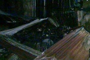 'Bà hỏa' thiêu rụi nhiều căn nhà ở An Giang