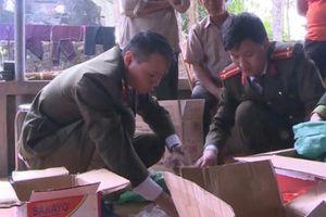 Thanh Hóa: Khởi tố đối tượng mua bán, tàng trữ thuốc nổ