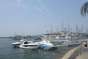 Quảng Ninh: Du khách Nhật Bản tử vong sau trượt ngã xuống nước ở Tuần Châu