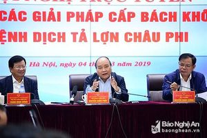 Chủ tịch UBND tỉnh chịu trách nhiệm về kết quả phòng chống dịch tả lợn