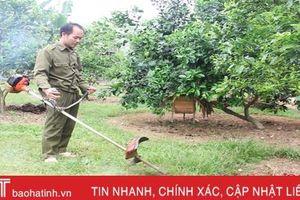 Làm vườn mẫu theo hướng trang trại, thu trăm triệu đồng mỗi năm