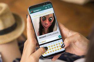 Đi tìm cha đẻ của 'quái vật' Momo và những rắc rối trên mạng xã hội