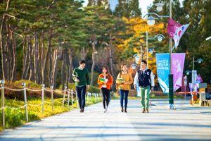Hàn Quốc thắt chặt quy định cấp thị thực với du học sinh Việt Nam