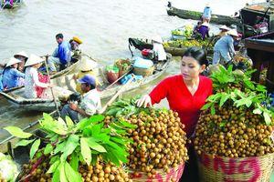 Nông sản sang Trung Quốc: Cửa vẫn rộng nếu không 'chộp giật'