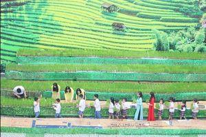 Ngắm 'ruộng bậc thang' kỳ thú ngay giữa sân trường tiểu học và THCS ở Hà Nội