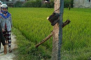 Quảng Nam: Hai vợ chồng thương vong do kéo điện bẫy chuột