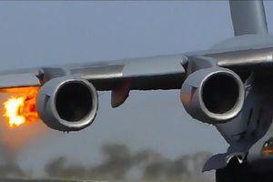 Chim diều hâu biến động cơ C-17 thành ngọn đuốc