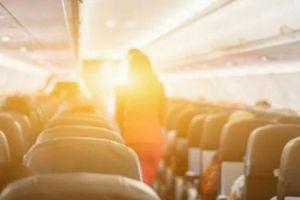 Máy bay tắt đèn, nữ hành khách New Zealand hốt hoảng vì bị sờ soạng