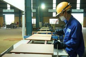 Bộ Xây dựng bán vốn tại Viglacera với giá khởi điểm 23.000 đồng