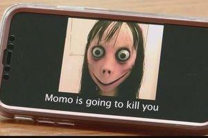 Cục trẻ em bị chê phản ứng chậm khi thử thách Momo 'xúi trẻ tự sát' tràn lan trên mạng