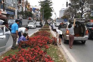 Hình ảnh người dân đánh ô tô đến 'hôi hoa' dọc đường Kim Mã gây xôn xao MXH