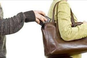 Khen thưởng tập thể, cá nhân chống móc túi trên xe buýt