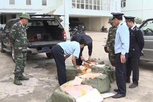 Hải quan Hữu Nghị bắt và tiêu hủy 300 kg sản phẩm từ lợn nhập lậu