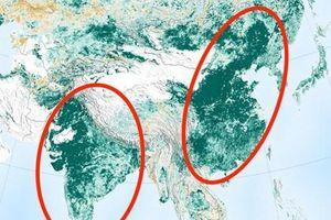 Trái Đất 'xanh' hơn 20 năm trước nhờ nỗ lực của Trung Quốc và Ấn Độ