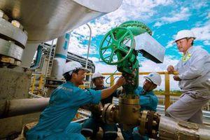 Dự án Permeate Gas giúp Đạm Cà Mau tiết giảm 50 tỷ đồng/năm
