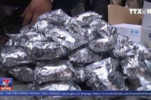 Thái Bình bắt giữ 3 đối tượng vận chuyển trái phép số lượng lớn ma túy