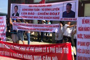 TP.HCM khẩn trương làm rõ sai phạm của Tập đoàn Anpha Holdings và Tập đoàn MIK Group