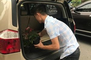 Dừng xe sang lấy hoa sau thượng đỉnh Mỹ - Triều