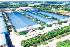 Tổng Cục Môi trường làm khó doanh nghiệp Thái Nguyên?