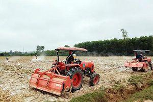 Hiệu quả sản xuất trên vùng gò đồi trung du Cam Lộ