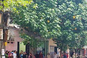 Nghi phạm truy sát gia đình 4 người ở Nam Định đã tử vong
