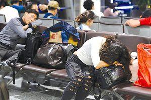 Hãng hàng không khốn khổ vì những vị khách ngoại 'ăn vạ'