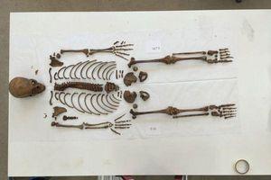 Phát hiện mộ tập thể chứa hài cốt của 269 trẻ em làm 'vật tế thần' ở Peru