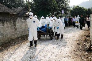 Lào Cai: Lập 3 chốt kiểm soát vận chuyển lợn