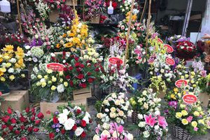 Sát ngày 8-3, hoa hồng tăng giá mạnh