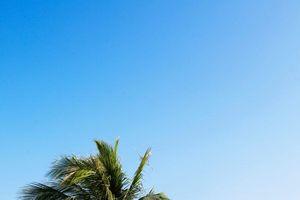 Cuba: Quyến rũ du khách bằng văn hóa