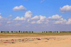 62 nghìn người đổ về khiến trại tị nạn tại Syria quá tải