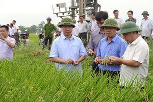 Tạo lực mới trong thu hút đầu tư ở Yên Thành