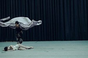 Nghệ sỹ Việt - Hàn trình diễn múa liên hợp 'Sắc màu vũ điệu'