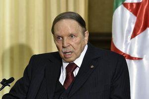 195 người bị bắt giữ trong các cuộc biểu tình ở Algeria