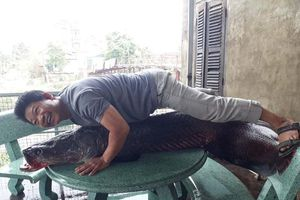 Sự thật bắt được thủy quái 110 kg trên sông Nhuệ: Loan tin xôn xao Hà Nội