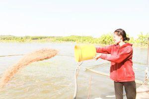 'Trái ngọt' từ dòng nước mát Sông Ray