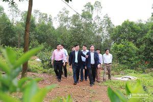 Phát triển Đô Lương với tầm nhìn trung tâm vùng