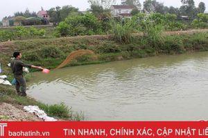 Biến đồng đất chua phèn thành vùng nuôi trồng thủy sản tiềm năng