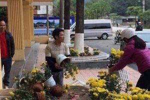 'Hôi' hoa ở ga Đồng Đăng: Sẽ mời từng người đến nhắc nhở?