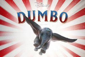 Những tựa phim 'cháy khét' tháng Ba: Chị Mười Ba cưỡi voi Dumbo đại chiến Dragon Ball và chị em nhà Captain Marvel