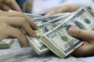 Lừa cha nuôi góp vốn làm ăn, chiếm đoạt chục tỷ đồng